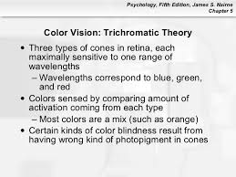 Color Blindness Psychology Psychology 101 Chapter 5