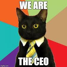Business Cat Memes - business cat memes imgflip