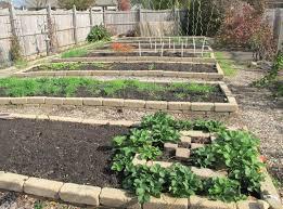vegetable garden border ideas garden design ideas