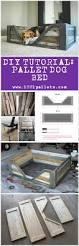 diy pdf tutorial pallet dog bed u2022 1001 pallets u2022 free download