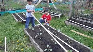 drip irrigation sytem for backyard garden gardening ideas made