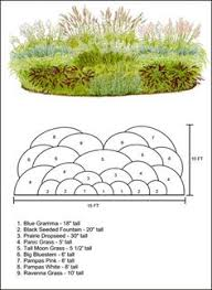 excellent article ornamental grasses classified by architectural