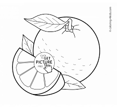orange fruits coloring page for kids fruits coloring pages