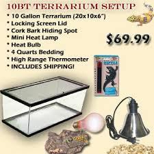 10bt complete terrarium setup for sale