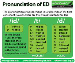 ideas of pronunciation of ed endings worksheets about cover