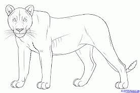 10 draw lion draw lions