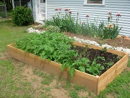 raised beds for your garden framing materials vegetable gardener