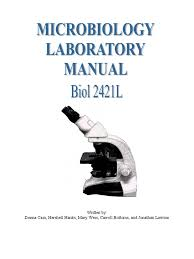 microbiology lab manual spring 2012 staining gram positive