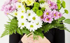 flowers in november the november birth flower interflora
