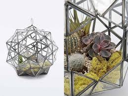 glass plant terrarium large star urban outfitters homegirl london