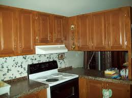Mobile Home Kitchen Remodeling Ideas by Modular Home Kitchen Designs Deluxe Home Design