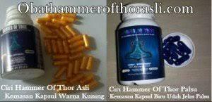 hammer of thor agen obat kuat terbesar dan terp blog kontes seo