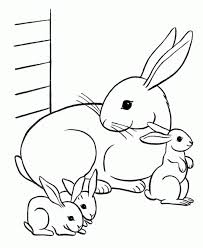 cute bunny rabbit simple rabbit color pages coloring