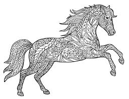 animal coloring pages for adults coloring pages