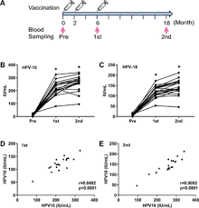 Serum Hpv development of a simple and immunochromatography method for