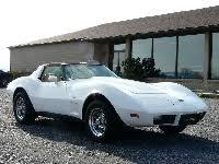1981 white corvette vettehound 500 used corvettes for sale corvette for sale