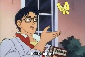 Meme A Photo - nobody really seems to understand where the is this a pigeon meme