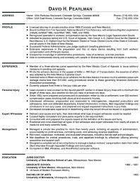 Basic Resume Template Pdf Best Lawyer Resume Example Livecareer Simple Resume Template Pdf