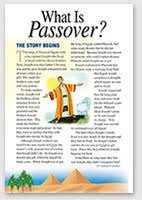 seder for children children s resources the fellowship