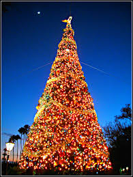 fairmont s annual tree lighting ceremony and more