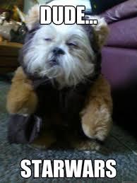 Stoned Dog Meme - stoned dog loves star wars funny ha ha pinterest awesome