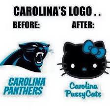 Carolina Panthers Memes - 1000 id礬er om scam newton p礇 pinterest nfl atlanta falcons og