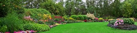 spring landscaping spring landscaping tips for colorado homeowners