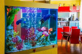 chambre aquarium le bel aquarium avec les poissons colorés dans une chambre à l