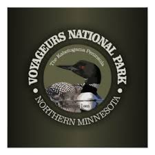 loon posters zazzle