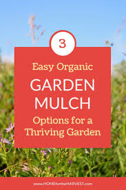 What Kind Of Mulch For Vegetable Garden by Best 25 Organic Mulch Ideas On Pinterest Garden Mulch