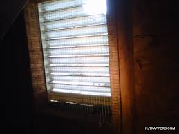 nj trappers attic and gable vent screens