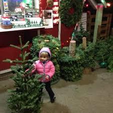hunter christmas trees 13 photos u0026 19 reviews christmas trees