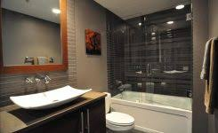 Barn Door Ideas For Bathroom Barn Doors For Bathrooms Fancy Design Sliding Barn Door Bathroom
