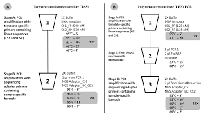 deconstructing the polymerase chain reaction understanding and