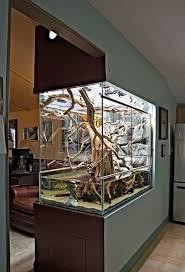Design Ideas Best 25 Aquarium Design Ideas On Pinterest Aquarium Ideas Fish