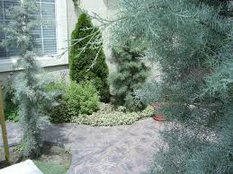 Patio Surfaces by Patios U2013 Surfaces Steve Snedeker U0027s Landscaping And Gardening Blog