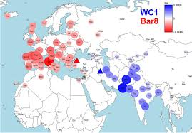 Fertile Crescent Map Early Neolithic Genomes From The Eastern Fertile Crescent Science