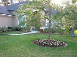 front yard landscape ideas around trees garden house and
