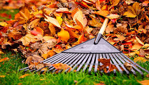 Lawn And Landscape by A Seasonal Guide Fall Lawn And Landscape Care