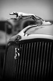 timmis ford v8 greyhound ornament by gordon dean ii cars
