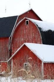 papa barn mama barn and baby barn born in a barn pinterest