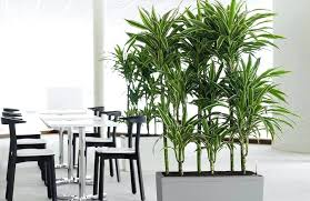 artificial plants and trees banana trees cheap artificial tree