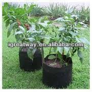 1 gallon nursery pots 1 gallon nursery pots suppliers and