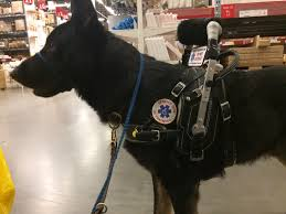 banner badge service dog id for harness handle