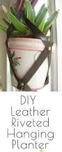 Diy Hanging Planter by Best 25 Small Flower Pots Ideas On Pinterest Front Door