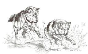 wolves favourites by anouk2 on deviantart