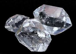 clear gemstones 8 best orthoceros images on fossils gemstones and
