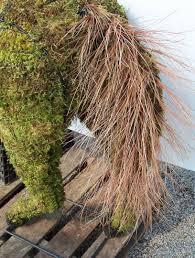 Horse Topiary Horse Topiary Frame Only Moss Filled Five Sizes Available