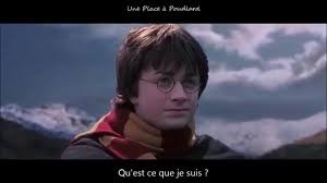 harry potter chambre des secrets vf harry potter and the chamber of secrets deleted vostfr