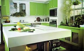 green kitchen cabinet ideas green kitchen color ideas home improvement and interior